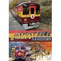 わたらせ渓谷鐵道トロッコわっしー号運転席展望 【DVD】