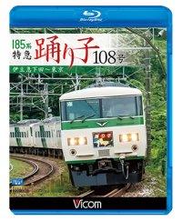 185系 特急踊り子108号 伊豆急下田~東京 【BD】