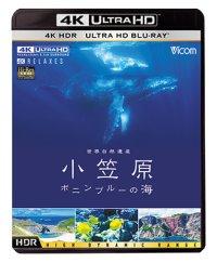 世界自然遺産 小笠原 ~ボニンブルーの海~【UBD】