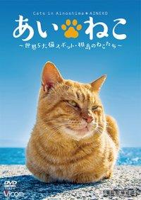 あいねこ 世界5大猫スポット・相島のねこたち【DVD】