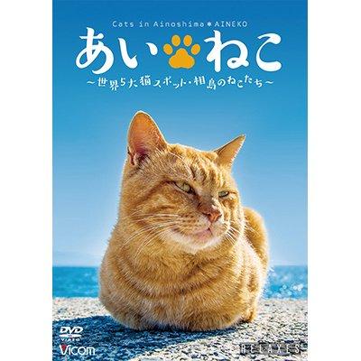画像1: あいねこ 世界5大猫スポット・相島のねこたち【DVD】