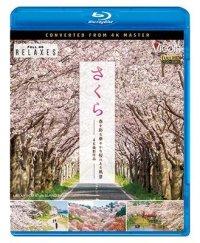 さくら 春を彩る 華やかな桜のある風景 4K撮影作品【BD】