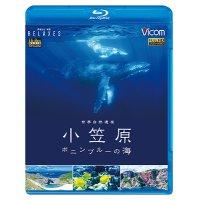 世界自然遺産 小笠原 ~ボニンブルーの海~【BD】