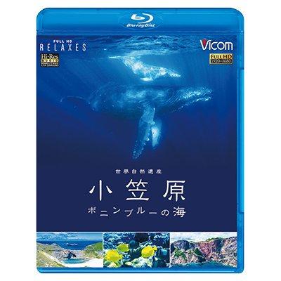 画像1: 世界自然遺産 小笠原 ~ボニンブルーの海~【BD】