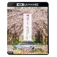 新発売!! 4K さくら HDR 春を彩る 華やかな桜のある風景【UBD】