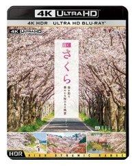 4K さくら HDR 春を彩る 華やかな桜のある風景【UBD】